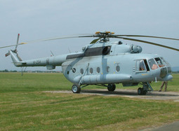 THE PRESIDENT'S helicopter H-254 has also been grounded as a result of an autopilot failure
