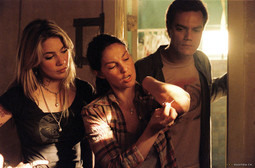 LYNN COLLINS, Michael Shannon i Ashley Judd