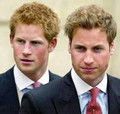Koncert organiziraju princ William i princ Harry